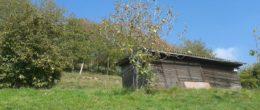 Terreno agricolo con deposito in vendita a Adrara San Martino ( TA12 )