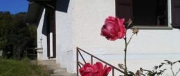 Villetta indipendente in affitto a Foresto Sparso ( AFV16 )